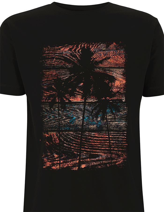 Driftwood-Zoom